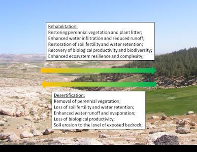 Carbon Dioxide Emission increasing Desertification