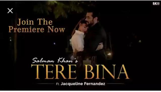 TERE BINA LYRICS — SALMAN KHAN × JACQUELINE FERNANDEZ