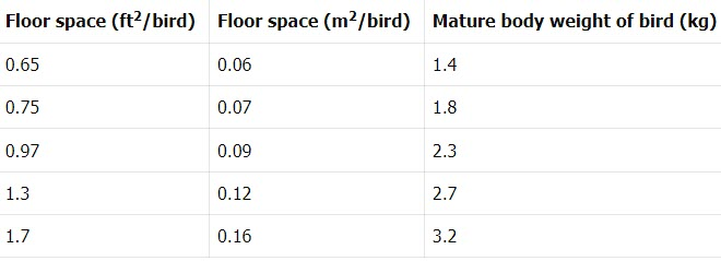 calculation of floor space for poultry