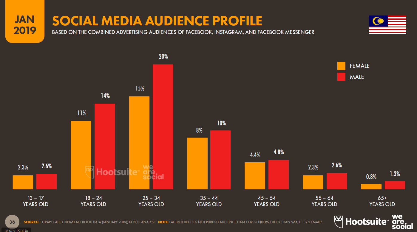 Social media audience profile in Malaysia