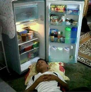 Gambar unik dp bbm lucu tidur di kulkas