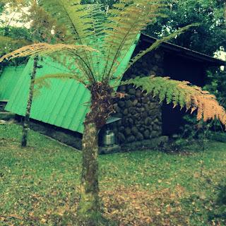 Cabana em Meio às Árvores, no Parque do SESI, em Canela