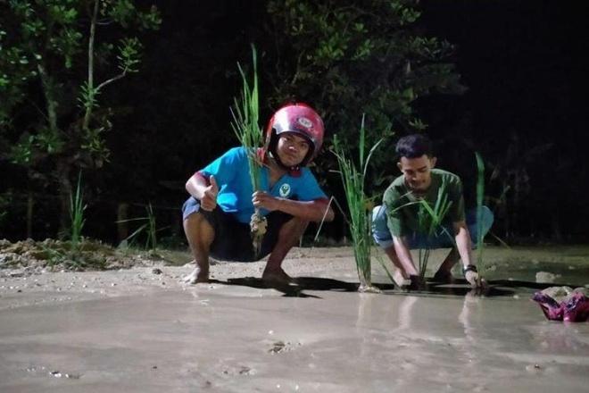 Tak Kunjung Diperbaiki, Jalan Rusak di Bone Ditanami Padi