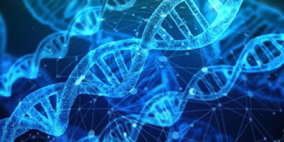 Research with DNA barcoding troubles evolutionists.