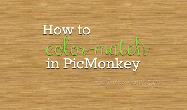 How to Match Colors and Make a Color Palette in PicMonkey