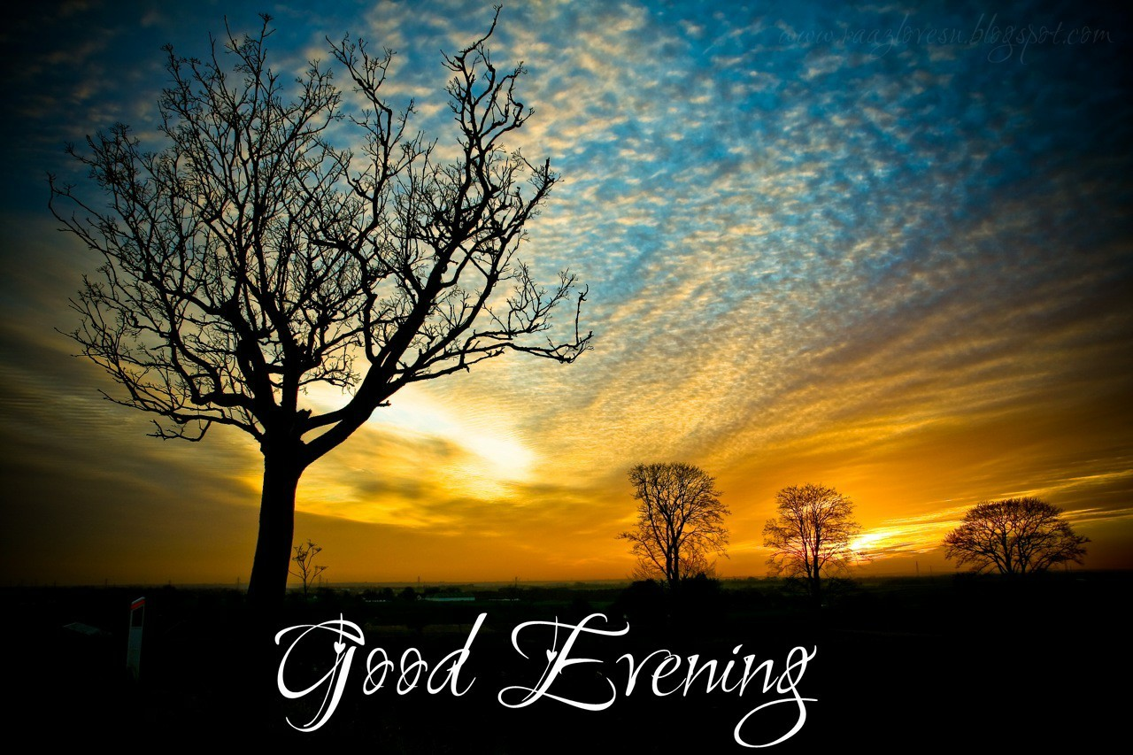 Good Evening Sms In Urdu And Hindi Khamosh See Sham Or Guftago Ki