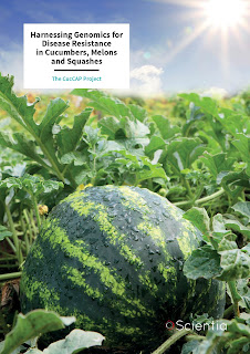 https://cuccap.org/2019/05/20/harnessing-genomics-for-disease-resistance-in-cucumbers-melons-and-squashes-scientia/