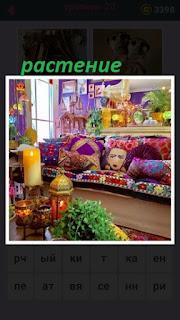 в необычной разноцветной комнате находится растение и свечи