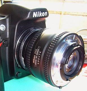 Tips dan Trik membuat foto makro