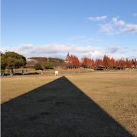 打上川治水緑地 芝生広場 モニュメント 影