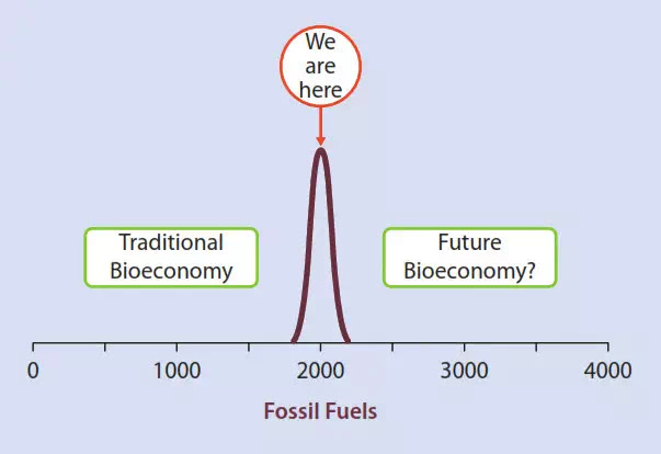 . Fig. 1 Today's economy and prosperity are based on fossil resources deposited during geological periods. Fossil coal and energy resources are finite. We are therefore currently at the peak of the fossil age, which will one day represent only a brief epoch in human history (Schurr 2015)