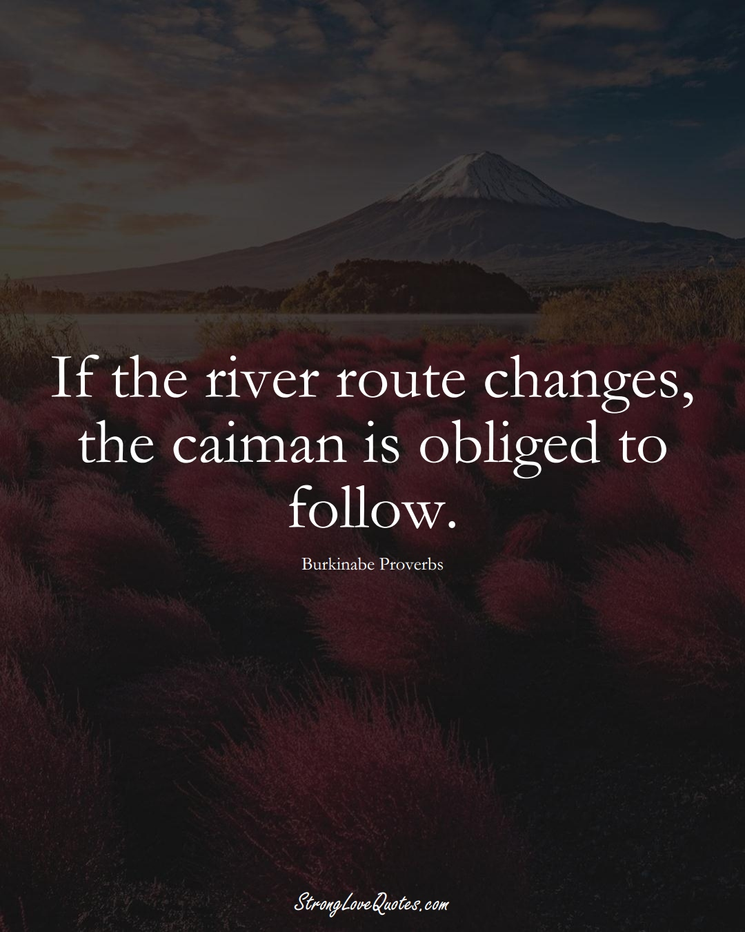If the river route changes, the caiman is obliged to follow. (Burkinabe Sayings);  #AfricanSayings