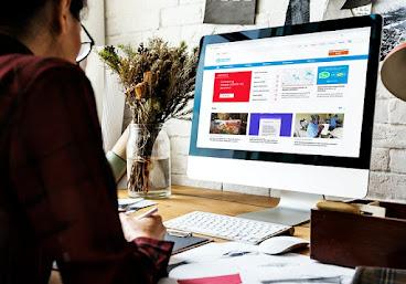 माइक्रो निश वेबसाइट क्या है ?