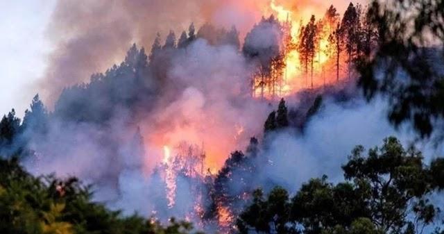Apesar da crise deflagrada pelas queimadas na Amazônia, ameaçada de devastação pela política ambiental irresponsável de Jair Bolsonaro e seu ministro do Meio Ambiente, Ricardo Salles,