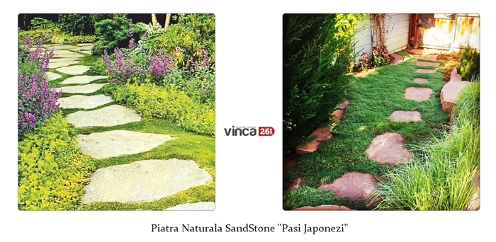 Piatra naturala SandStone