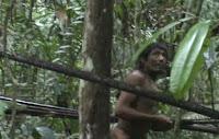 kawahiva, Survival, Indigenas, Amazonia, Funai,