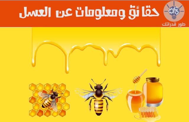 حقائق ومعلومات عن العسل