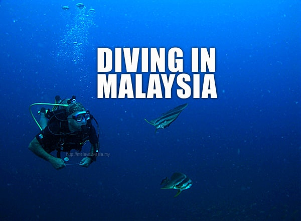 Malaysia Diving