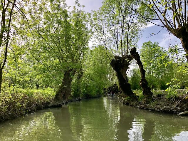 Marais Poitevin Vendée Franta