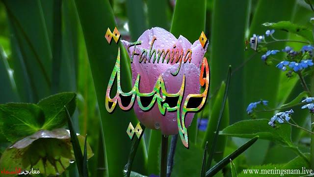 معنى اسم فهمية وصفات حاملة هذا الاسم Fahmiya