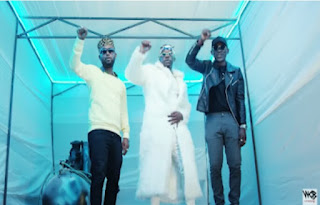 Download Video | Nyandu Tozzy ft. Rayvanny & Mr Blue - Mawe mp4