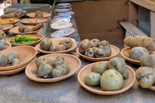 Peru Food Fact #9: Peru boasts 3000 kinds of potatoes