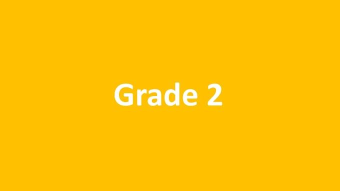 Prostatomegaly Grade 2
