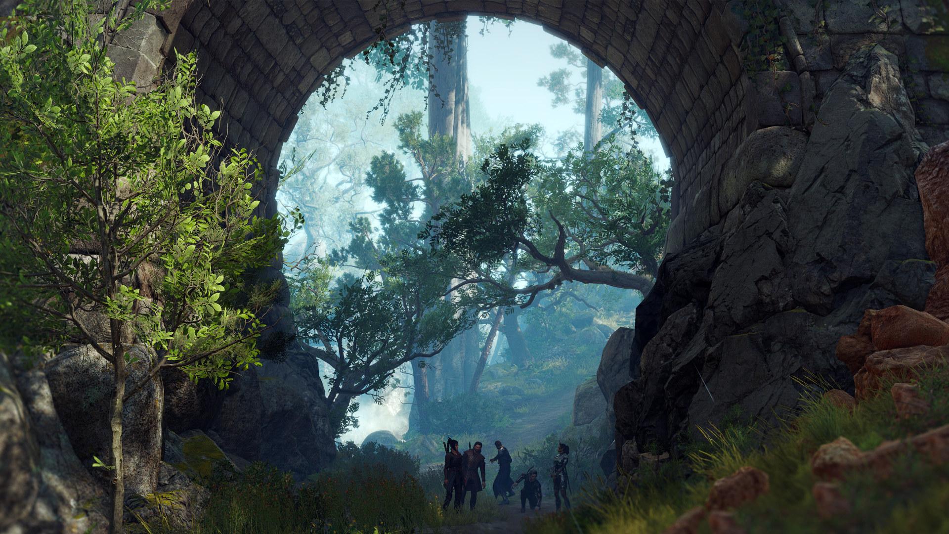 Baldur's Gate 3 - Puente