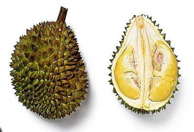 فاكهة الدوريان
