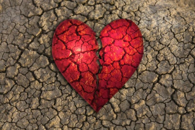 O Pastor Que Cura Nossos Corações