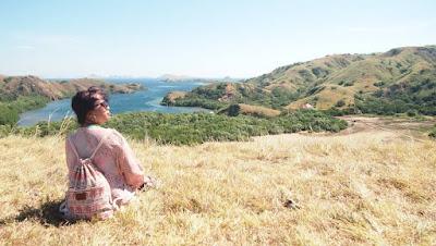 Pulau rinca taman nasional komodo