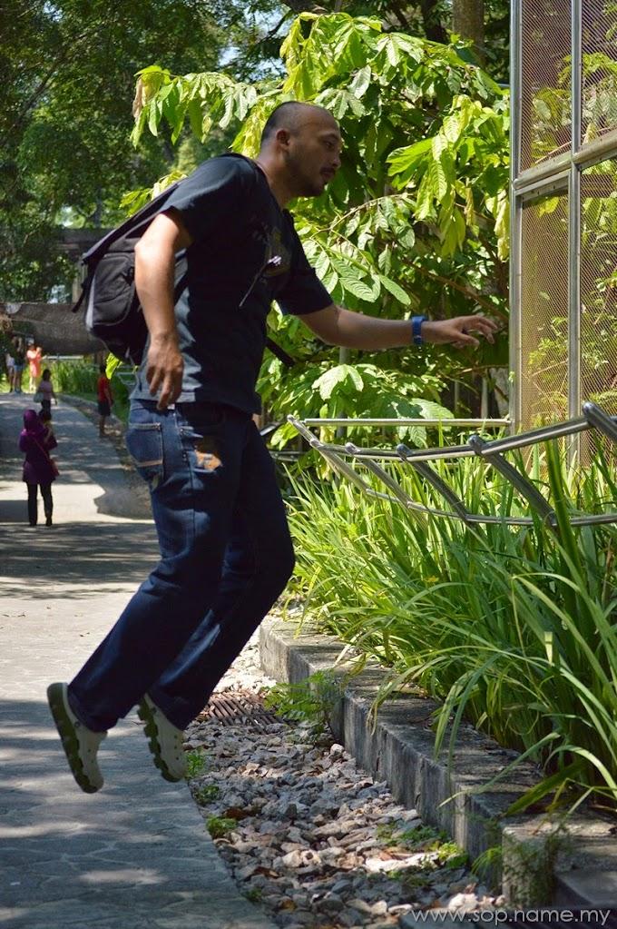 Visit Kuala Lumpur Bird Park
