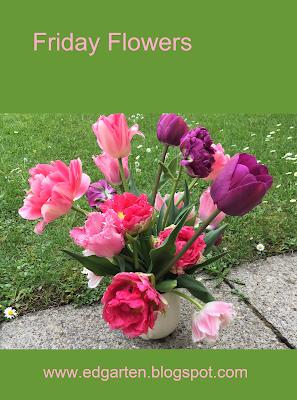 Pin Tulpenbouquet in rosa, pink und violett