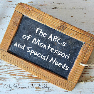 Book:  The ABCs of Montessori and Special Needs