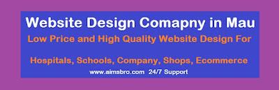 Website Design Company in Mau