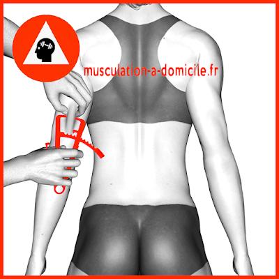 mesure triceps femme pince à plis cutanés adipomètre musculation fitness
