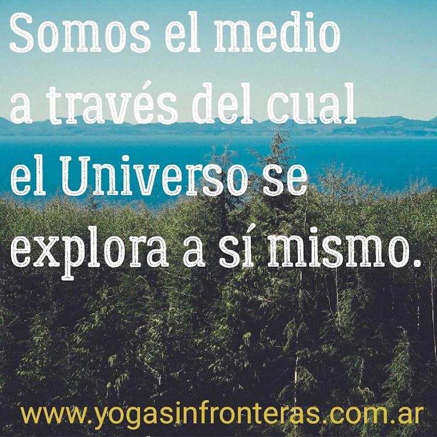Somos el medio a través del cual el Universo se explora a sí mismo.