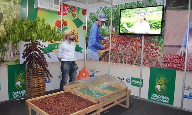 Caminho do café apresenta casos bem sucedidos em Rondônia