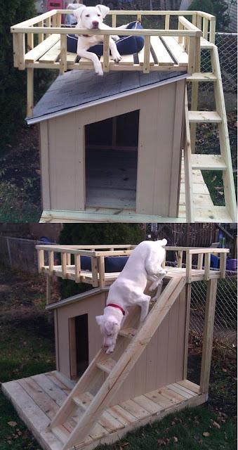 roof%2Btop%2Bdeck%2Bdog%2Bhouse%2Bplans diy shade house plans house list disign,Shade House Plans