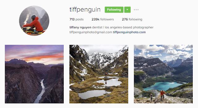 Follow @tiffpenguin on Instagram