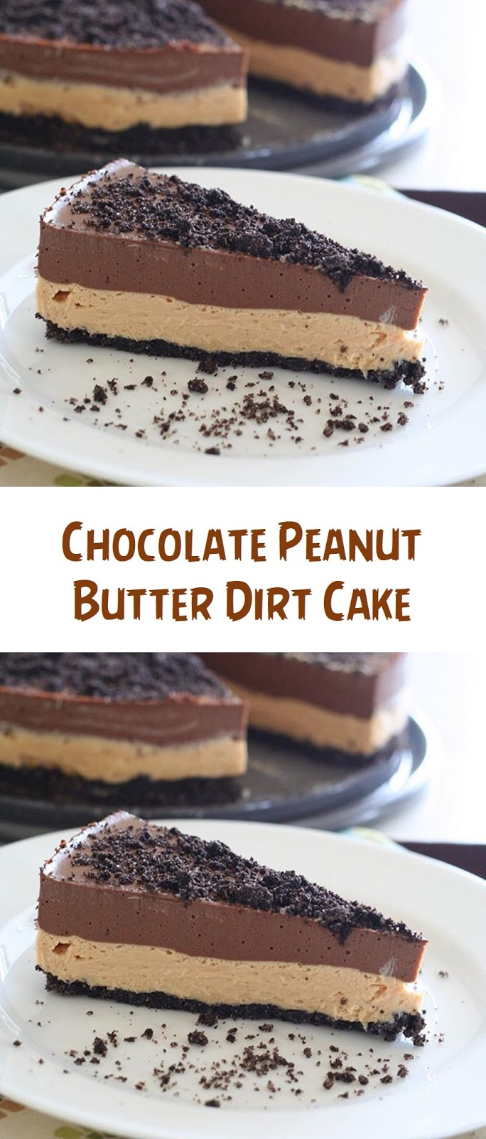 Chocolate Peanut Butter Dirt Cake