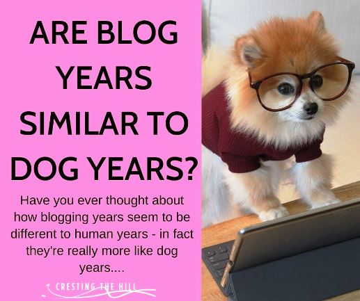 Have you ever thought about how blogging years seem to be different to human years - in fact they're really more like dog years....