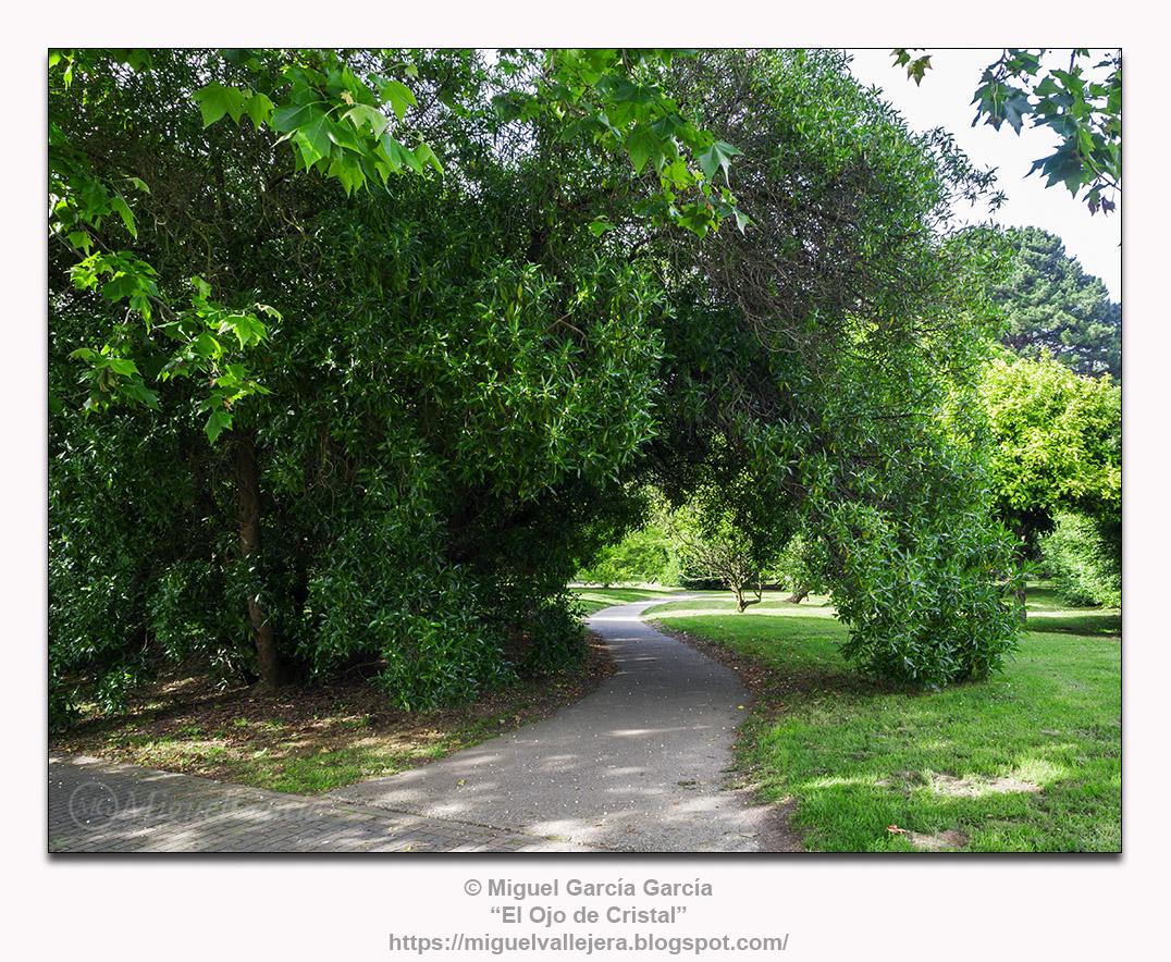 """Parque de """"As Galeras"""" o de las 13 rosas en O Porto de Santa Cruz"""