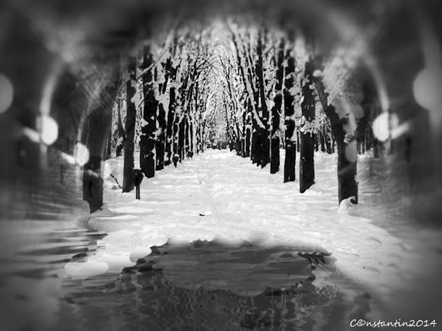 Grãdina Copou iarnã (vãzutã printr-o ţeavă lucioasă) - blog Foto-Ideea