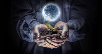 Image of 2 hands holding a seedling in soil with a moon hovering over it.
