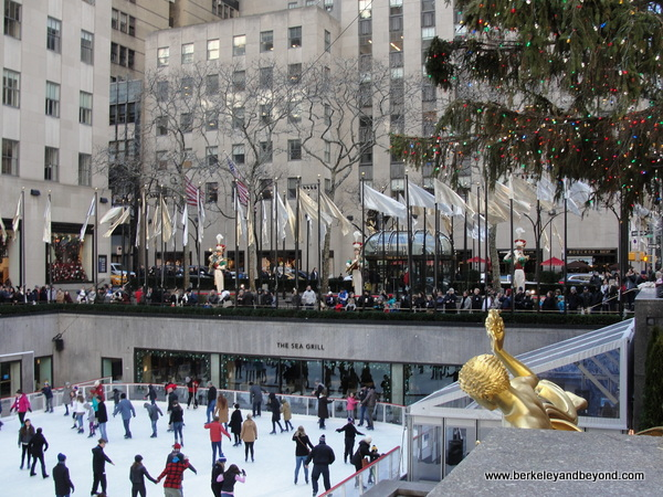 ice skating rink and Christmas tree at Rockefeller Center in NYC