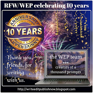The WEP completes 10 years!