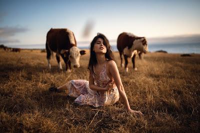 Chica acostada en el campo con vacas de fondo