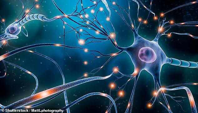 """""""Η ανθρώπινη συνείδηση δημιουργείται από το «ενεργειακό πεδίο» του εγκεφάλου"""""""