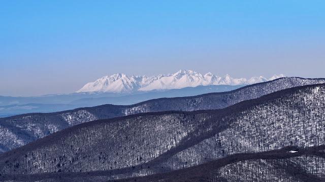 Zimowe Tatry z Tarnicy.